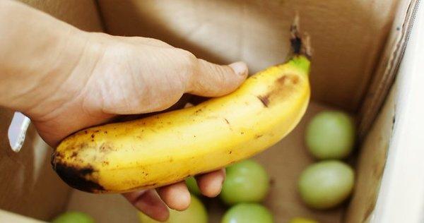 Спелый банан ускоряет созревание зеленых помидоров