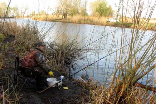 ловить плотву в апреле видео