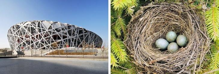 Архитектура, вдохновленная природой