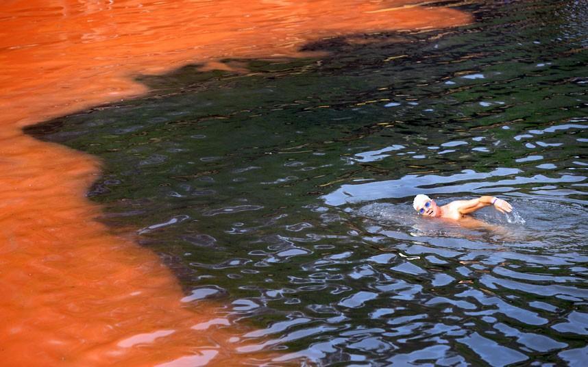 krovavoaliokean 8 Вода на пляжах Австралии окрасилась кроваво красным, напугав отдыхающих