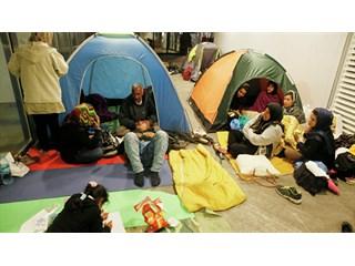 Мигранты дробят Запад — теперь уже официально