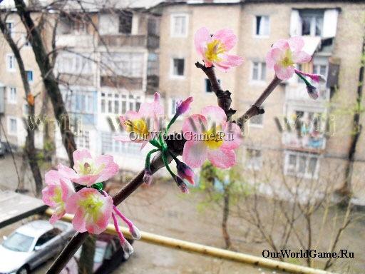 Мастер класс цветущая ветка вишни - символ весны. С праздником Навруз.