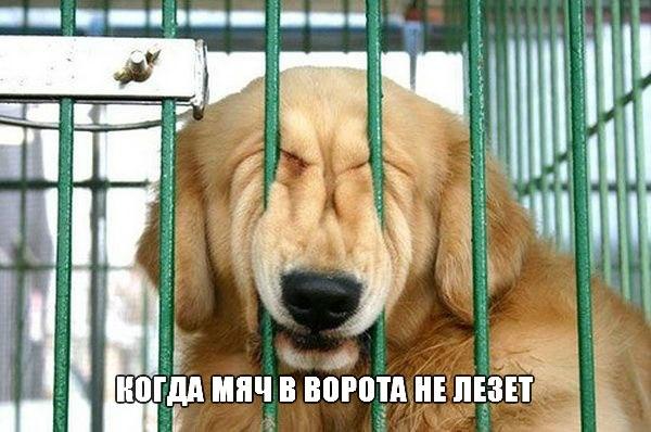 «Локомотив» и «Уфа» сыграли вничью