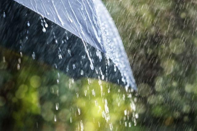 Москвичей предупредили о грозе и сильном ветре в ближайшие часы