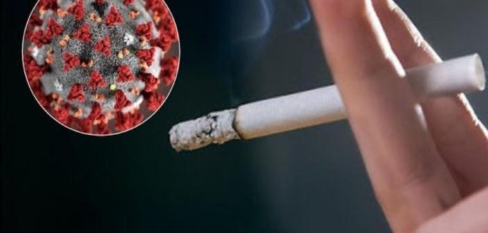 Курильщики больше подвержены заражению COVID-19, благодаря большему количеству рецепторов ACE2