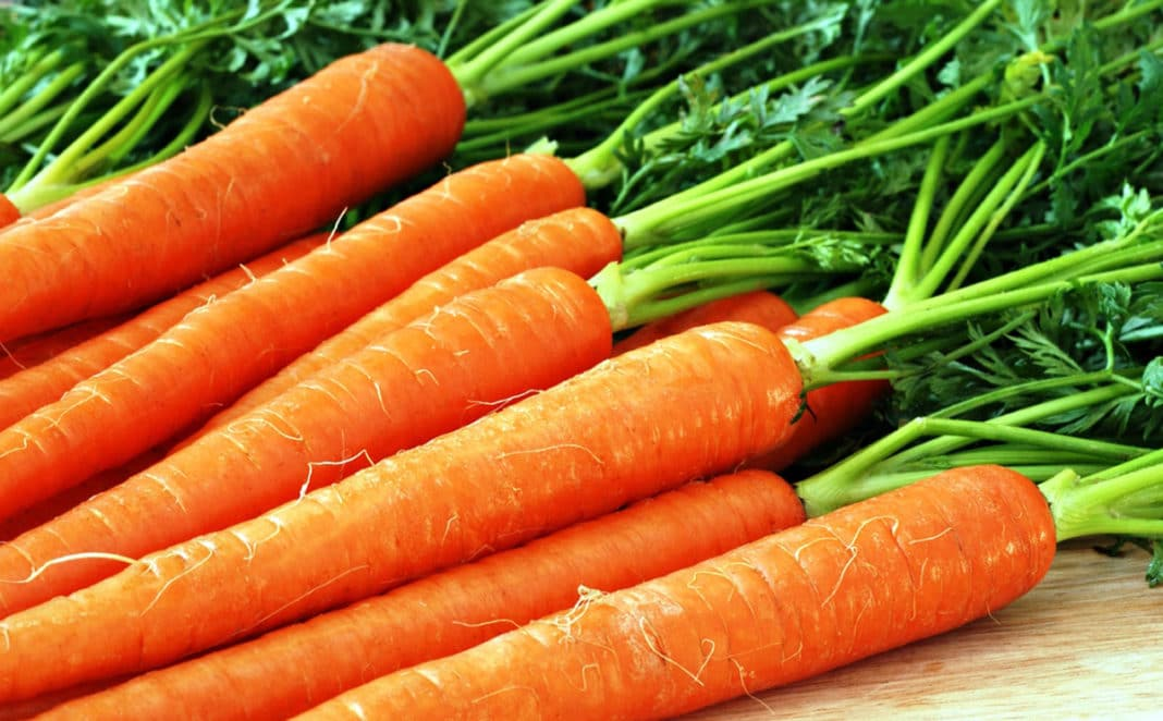 Маски из моркови для лица — …
