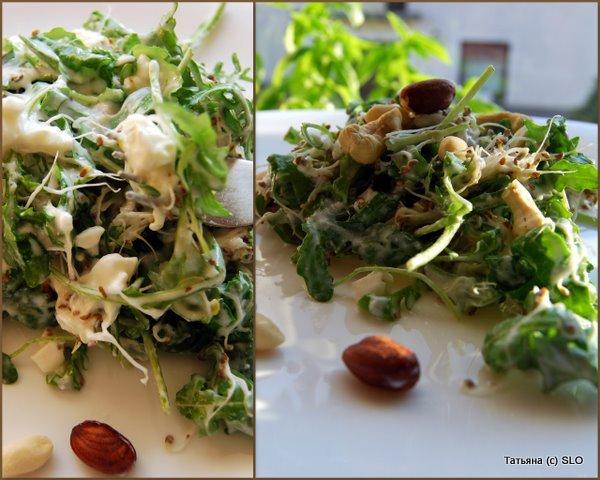 2 диетических женских салата из ростков люцерны (и желудку хорошо и талии не повредит). Фото-рецепты.