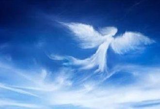 Если ваш ангел хочет вас пре…