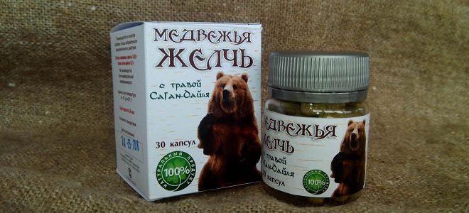Медвежья желчь в народной медицине