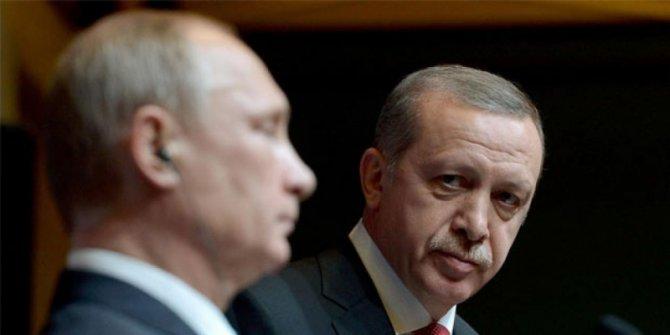 «По самые помидоры»: эмбарго с Турцией сохранилось