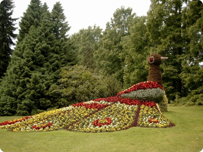 Остров цветов – Майнау, Германия (58 фото)