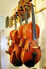 О скрипках и скрипичных мастерах