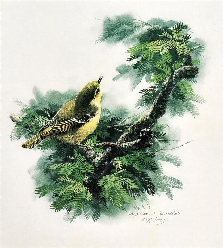 Птицы в творчестве китайского художника Zeng Xiao Lian