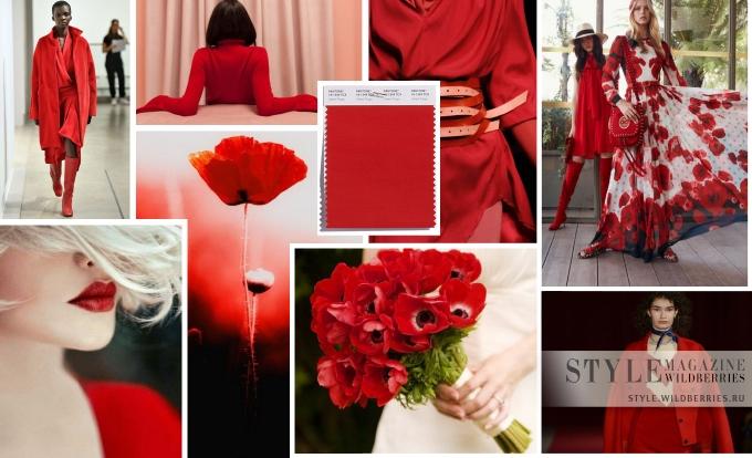 Модные цвета осени 2018: Доблестный мак