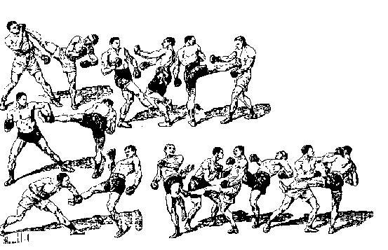 Сават (французский бокс)