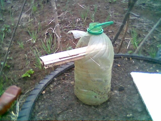 Как сделать ловушка для птиц из бутылки