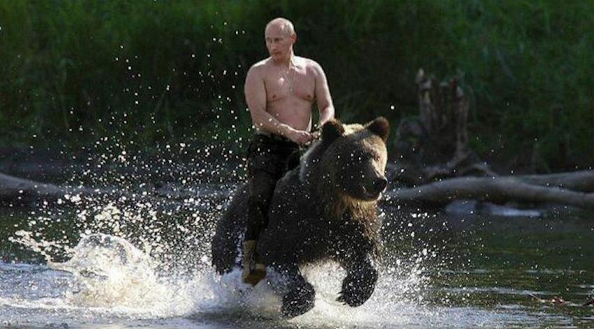 """""""Я расслабляюсь"""": Путин рассказал о своих снимках верхом на медведе"""