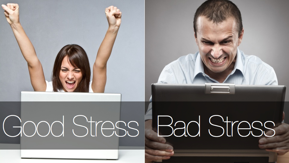 «Хороший» и «плохой» стресс:…
