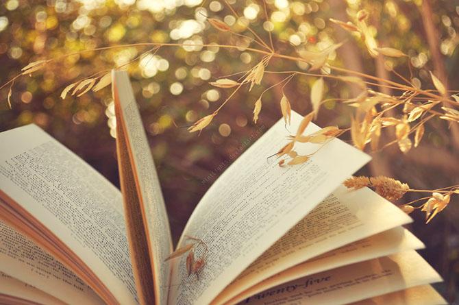 30 книг, на которые вы уже не сможете смотреть по-прежнему