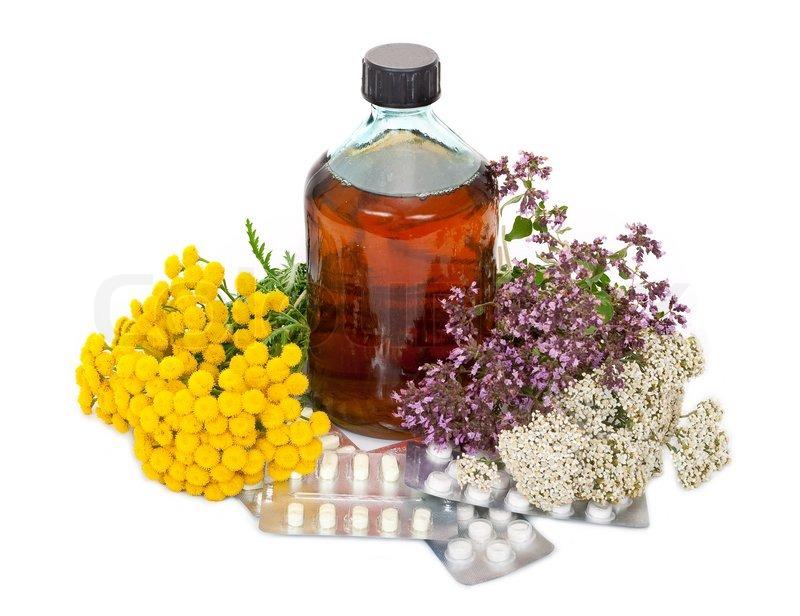 Кому лекарство, а кому — яд. Когда и для кого лекарственные травы могут быть опасны