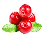 7 продуктов, очищающих организм лучше любых лекарств