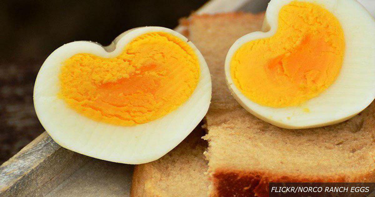 1 яйцо в день – и дорогу к врачу забудете на много лет! Вот почему