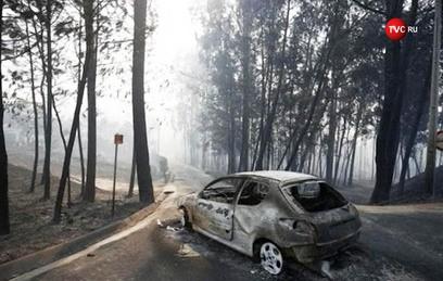 В Португалии объявлен трехдневный траур по жертвам лесного пожара