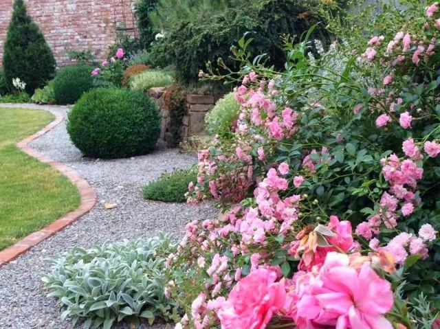 Сад мечты своими руками — реальная история