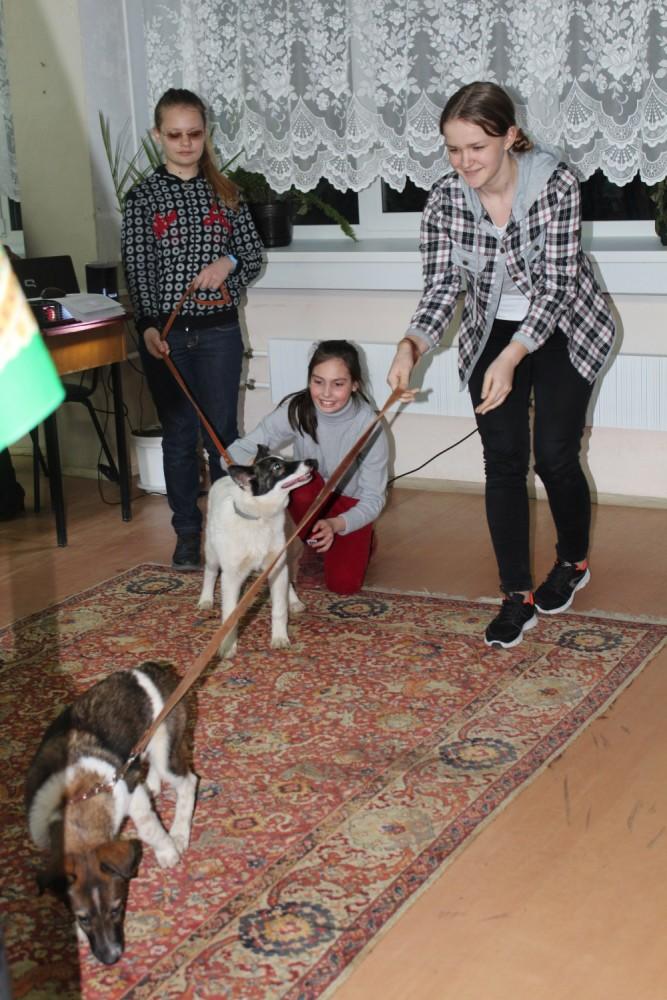 В Наро-Фоминске дети прочитали книги собакам