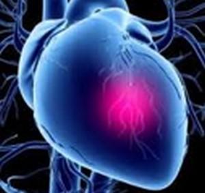 Сердечно-сосудистые заболевания: рецепты народной медицины для лечения стенокардии
