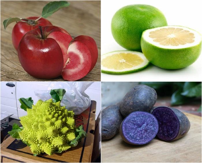 Самые необычные гибриды: 20 экзотических фруктов, ягод и овощей, которые можно назвать произведениями искусства