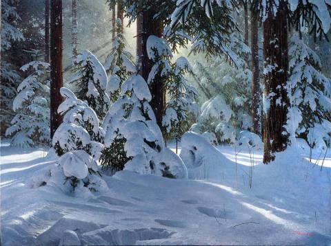 Зимние лучи