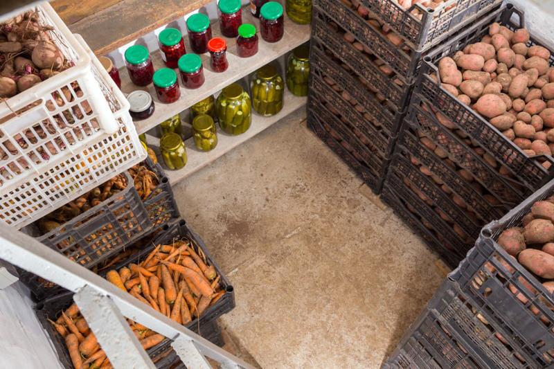 Как подготовить погреб и овощи к зимнему хранению