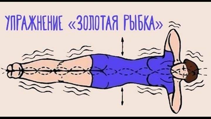 Здоровое тело: 5 омолаживающих упражнений Ниши