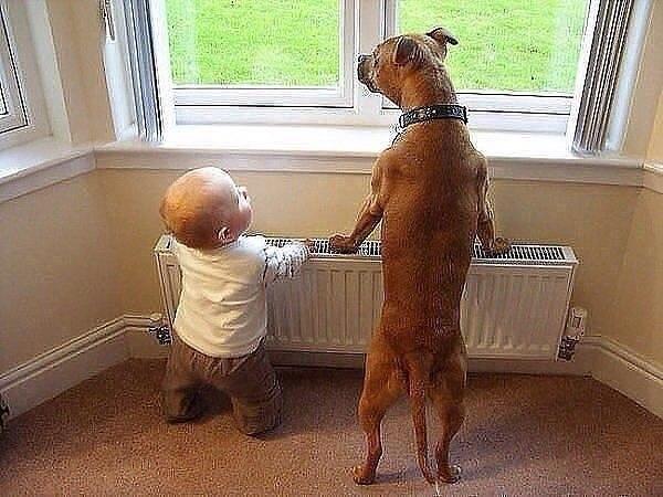 — Мам, вот когда мы вырастем, то будем заниматься всякой ерундой! Да? Улыбнемся)))
