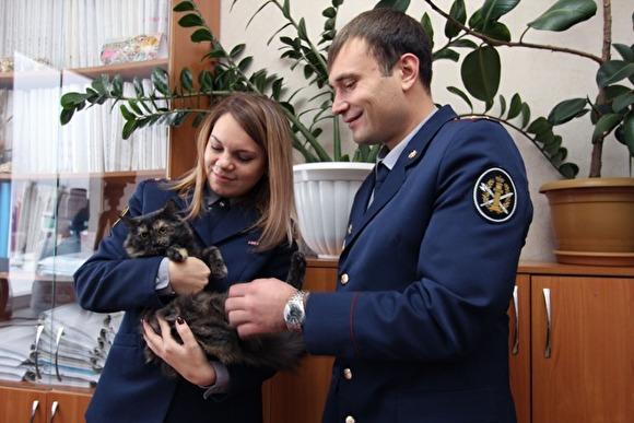 В Татарстане поймали пушисто…