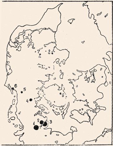 Южноскандинавские черты в погребальном обряде Плакунского могильника