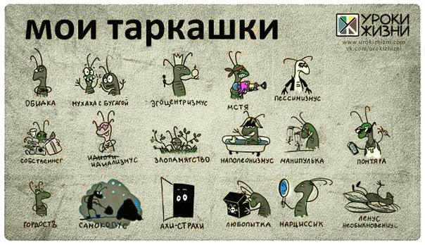У каждого свои тараканы
