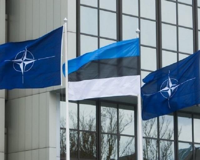 Эстония не случайно подняла …