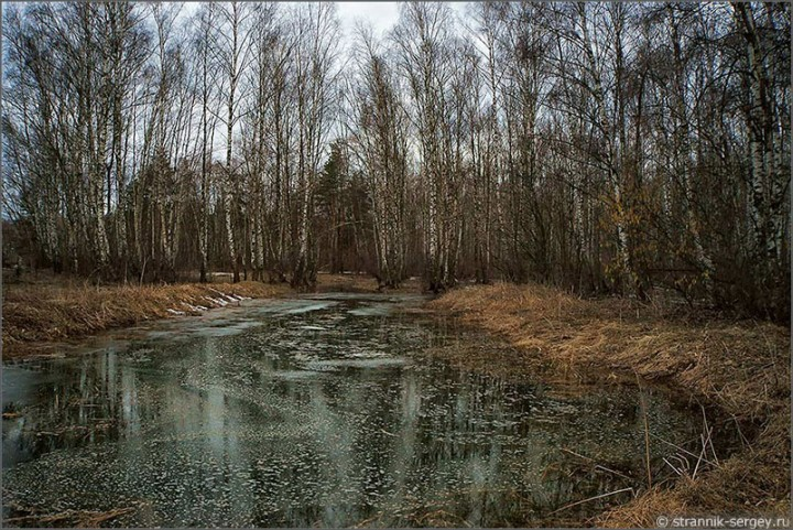 Весна. Русское поле