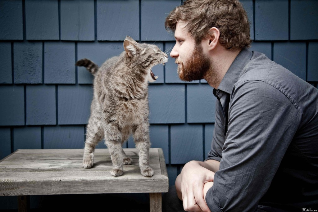Как я подружился с котом...