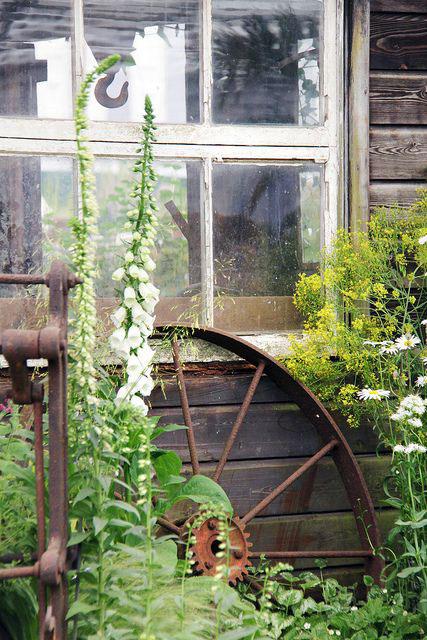 Зелёные идеи для балкона и дачи