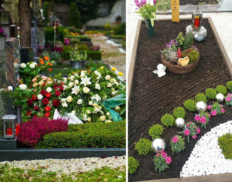 цветы на кладбище какие посадить