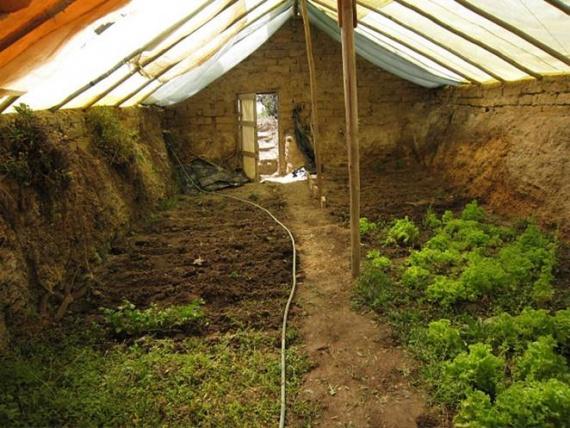 Как построить подземную оранжерею за 300 долларов для круглогодичного садоводства
