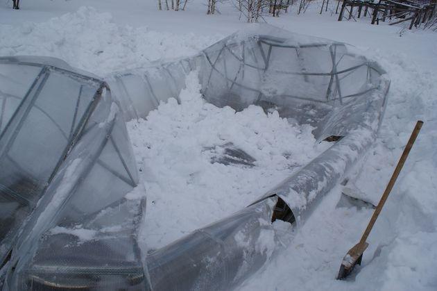 Как защитить теплицу от снега