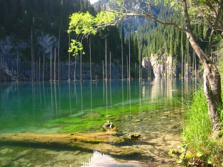 Загадка уникального озера-дикобраза в Казахстане