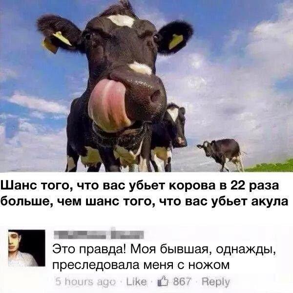 Забавные посты и комментарии из соцсетей (22 скриншота)