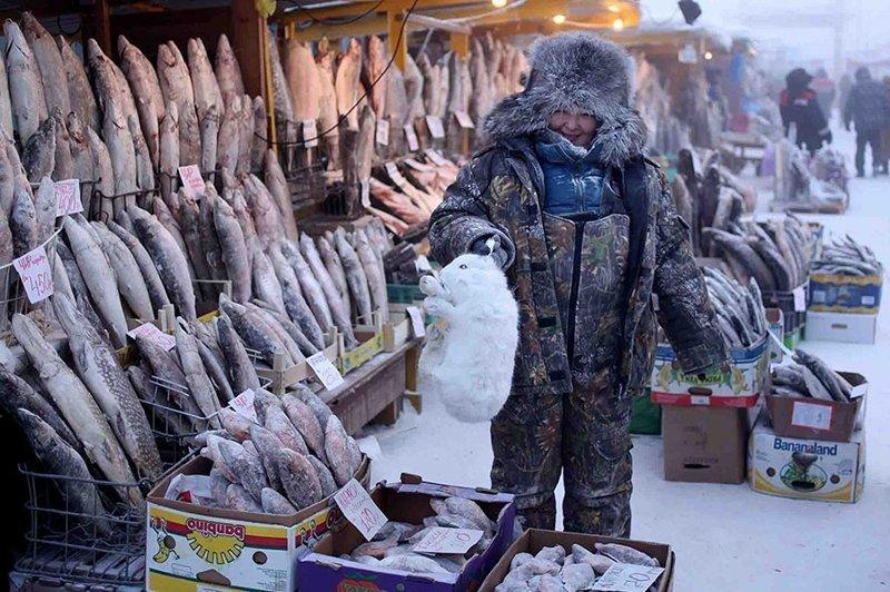 Оймякон: как живется в самом холодном месте России Оймякон, зима, интересное, полюс холода, якутия