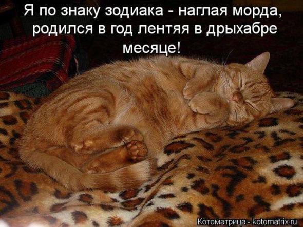 http://mtdata.ru/u17/photo2C9B/20637073082-0/original.jpg