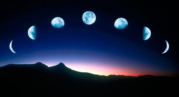 Как и почему лунные фазы влияют на растения